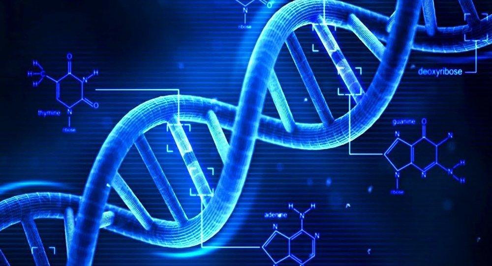遺伝で決まる